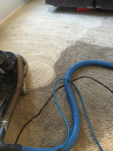 residue free carpet cleaning in litchfield park, avondale, goodyear, Estrealla and Verrado Arizona