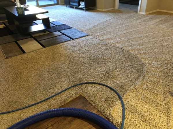 Why We Use Truck-Mounted Carpet and Tile Cleaning Equipment