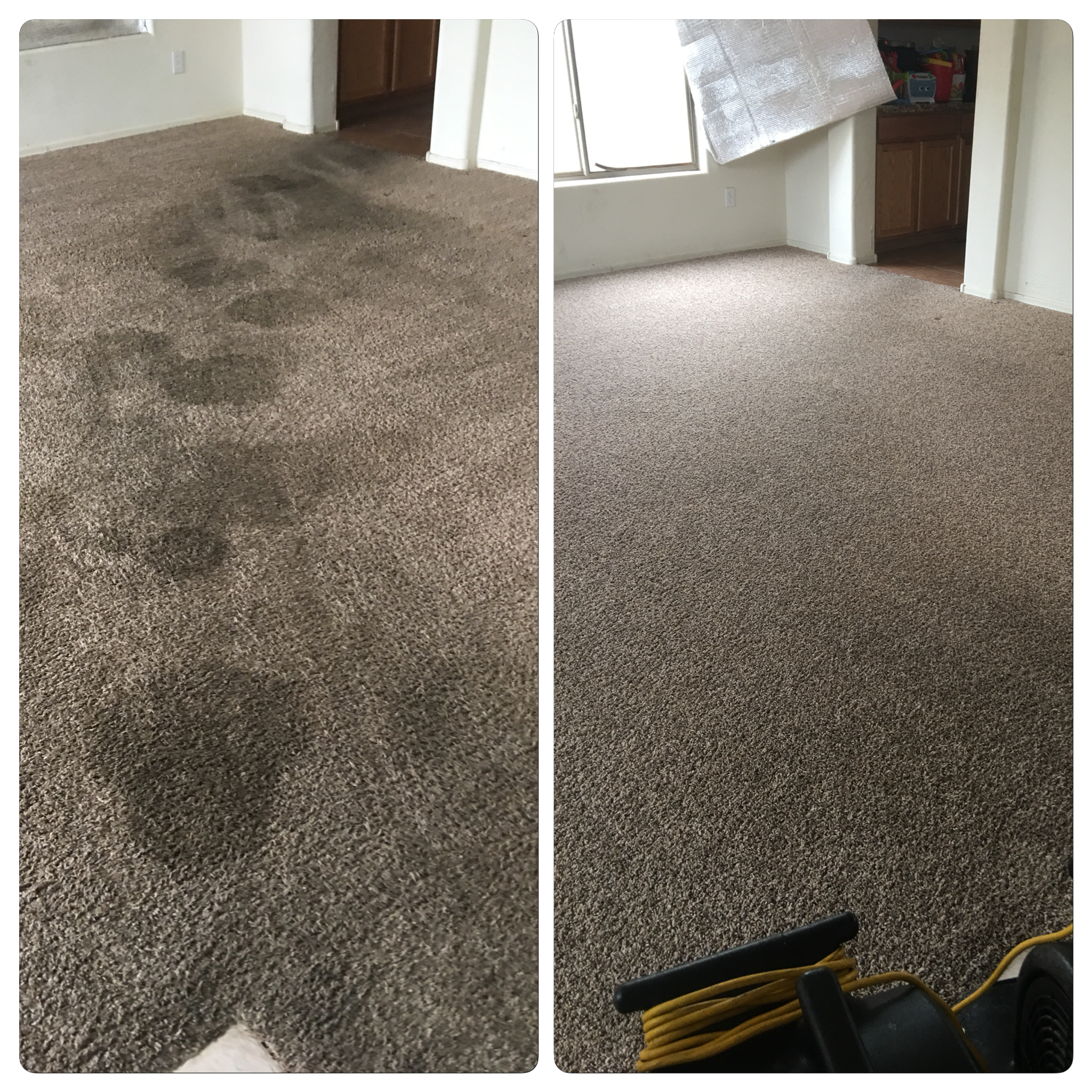Dry Soil Removal on Carpet