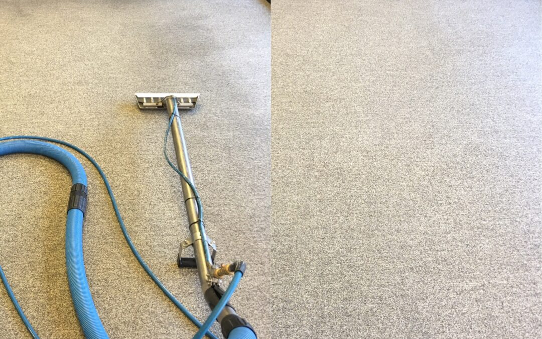 Truck Mounted vs Portable Carpet & Tile Cleaning Equipment