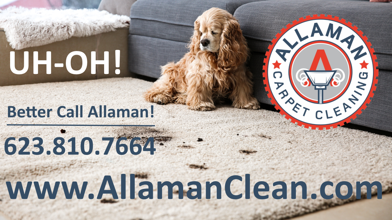 Waddell Arizona Carpet Tile and Upholstery cleaning by Allaman Carpet Cleaning