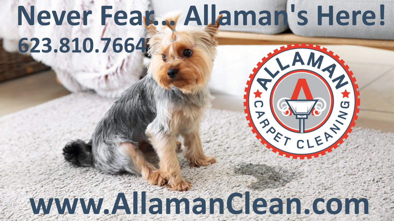 Peoria Arizona Carpet  Tile and Upholstery cleaning by Allaman Carpet Cleaning